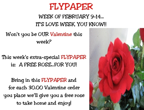 flypaper-020909