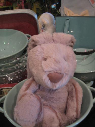 bunnies-002