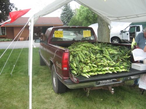 corn 001