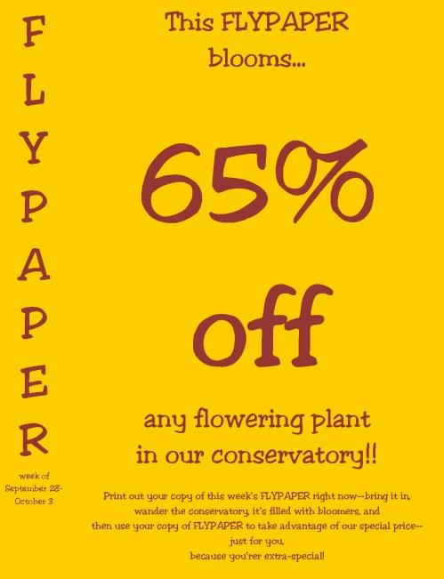 Flypaper 32