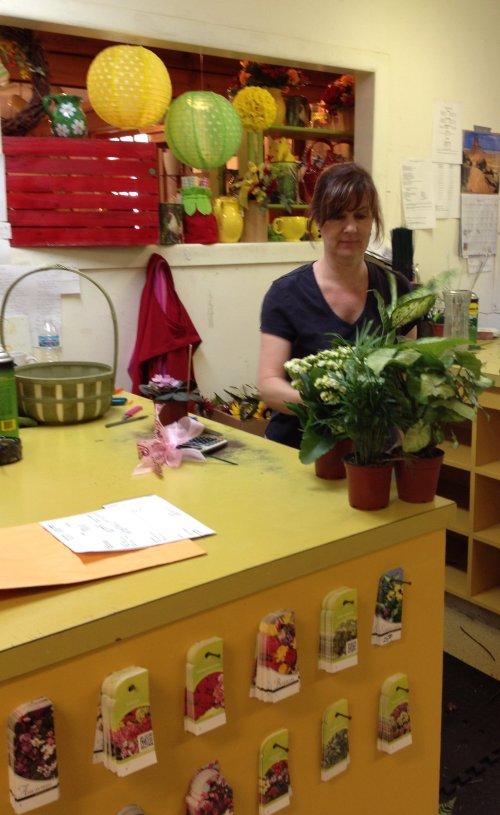 Julie creating divine dish gardens