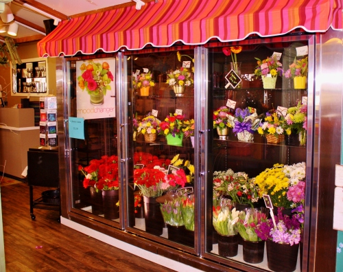 A cooler of pretties at Kar-Fre Flowers