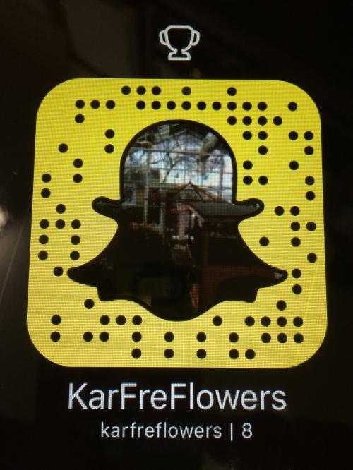 KarFre Flowers Snapchat